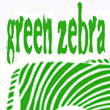 Green Zebra Music Camp
